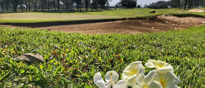 golf course consulting